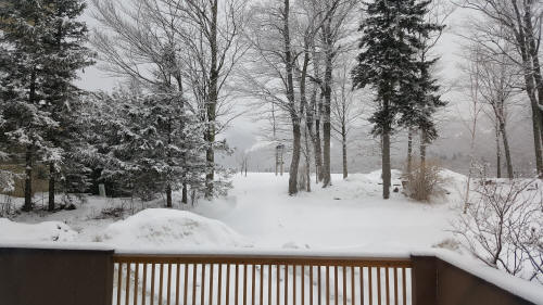 Winter View from Deck at Cascades Lodge